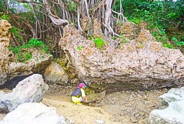 10月下旬の沖縄ってどんな感じ?現地ローカルが教える沖縄旅行の楽しみ方!